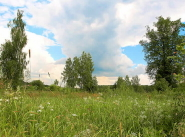 Коттеджный поселок Булгаков